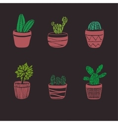 Hand drawn cactus set vector