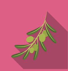 olive brancholives single icon in flat style vector image