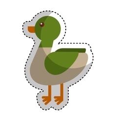 duck animal farm icon vector image