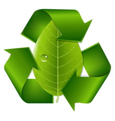 Recycle symbol with leaf vector