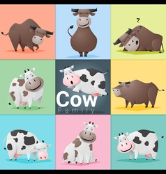 Set of cow family vector