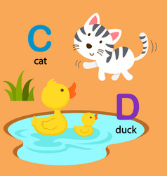 Isolated alphabet letter c-cat d-duck vector