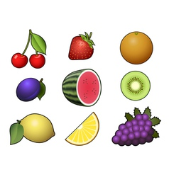 Fruits collection isolated on white background vector