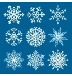 Set of white paper snowflakes vector image vector image