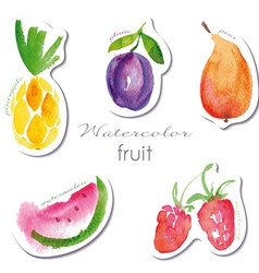 Watercolor fruit stickers set vector