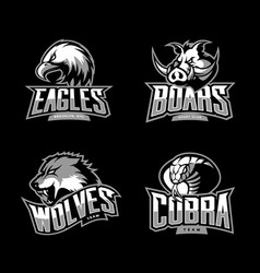 furious cobra wolf eagle and boar sport vector image vector image