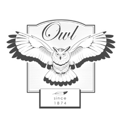 Owl engraving label logo vector image vector image