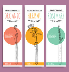 sketch herbal vertical banners with organic herbs vector image