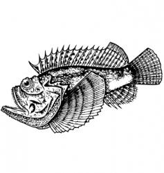 Stonefish vector