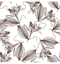 Vanilla sketch pattern vector