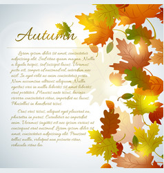 floral autumn template vector image