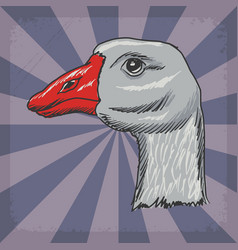 Background with goose vector