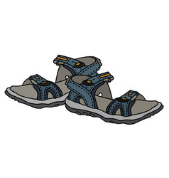 blue sport sandals vector image vector image