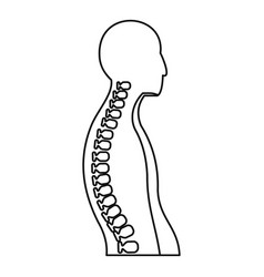 Human spine icon outline style vector
