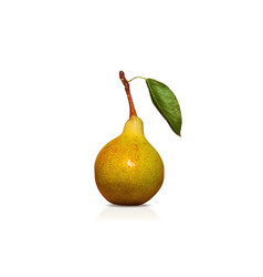 Juicy and ripe green pear with leaf on the stalk - vector