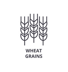 Wheat grains line icon outline sign linear vector
