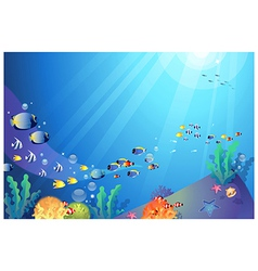 Underwater sea life background vector