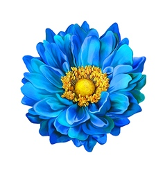 Blue dahlia flower vector