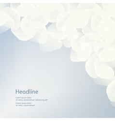 Background of white petals the effect of haze vector