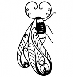 decorative bug vector image vector image