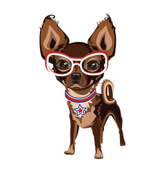 little doggy in glasses vector image