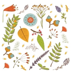 Autumn foliage set with twigs flowers and leaves vector image