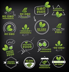 No gmo icon vector image