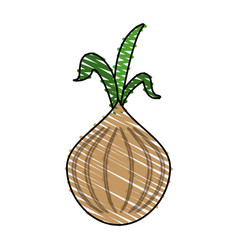 Garlic food doodle vector