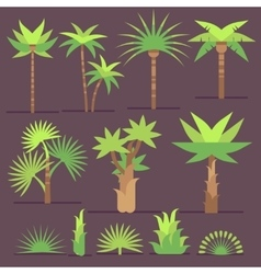 Tropical exotic plants and palm trees flat vector