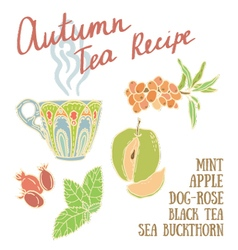 Delicious autumn tea recipe vector