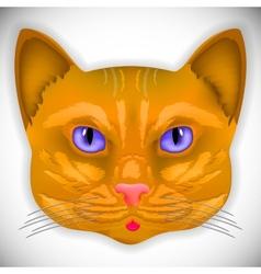 Cat face eyes animal cute kitten bow hair facial vector