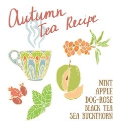 Delicious autumn tea recipe vector