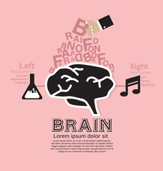 Brain infographic vector