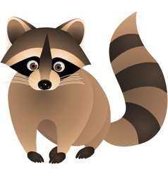 Raccoon cartoon vector