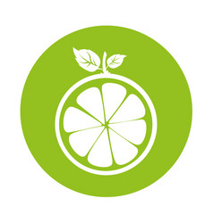 Half citrus fruit icon vector