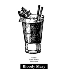 Hand drawn sketch cocktail bloody mary vintage vector image