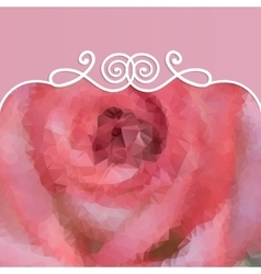 beautiful background with pink rose and pattern vector image