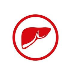 Human internal liver vector