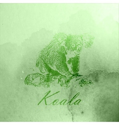 Vintage of a green watercolor koala bear on the vector