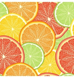 Abstract color background with citrus fruit vector