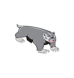 Badger pouncing cartoon vector