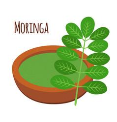 moringa vegetarian superfood healthy nutrition vector image vector image