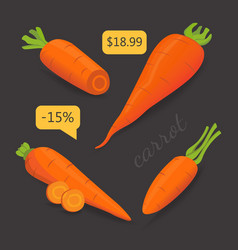 set carrot sliced carrot vector image vector image