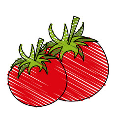 Tomato food doodle vector
