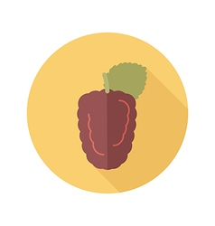 Blackberry bramble flat icon berry fruit vector