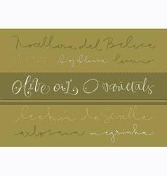 Olive oil varieties vector