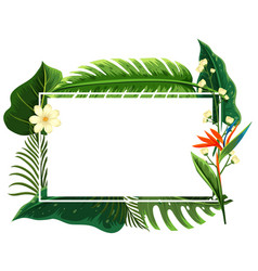 square frame with green leaves and flowers vector image vector image