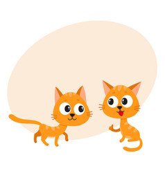 two cute funny naughty playful red cat vector image vector image