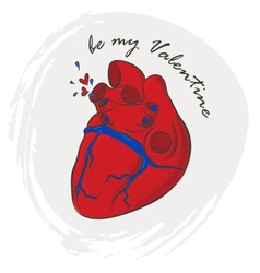 Valentines day greeting with human heart vector image