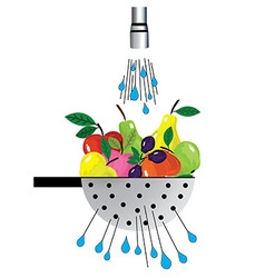 Metal colander and fruit of colander with fruit vector